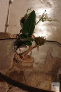 structure naturelle pour jolies plantes.