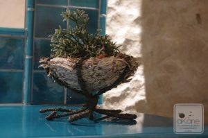 nid d'amour enlacé dans une structure faite de raphia armé.