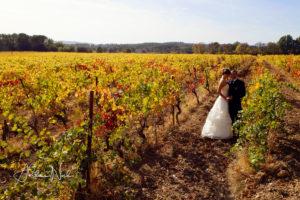 cérémonie laïque dans les vignes...
